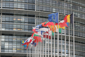 http://commons.wikimedia.org/wiki/File:Drapeau_du_Parlement_Europ%C3%A9en_de_Strasbourg.JPG?uselang=fr